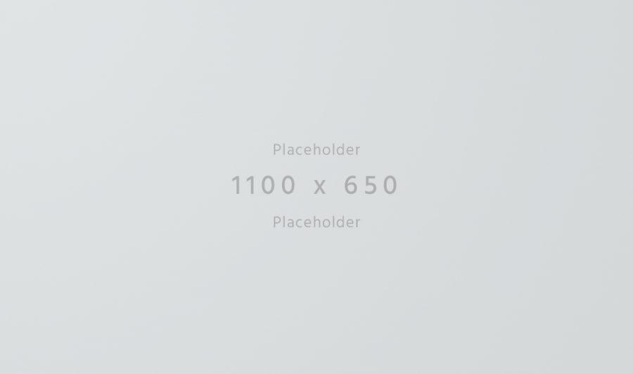1100×650-light